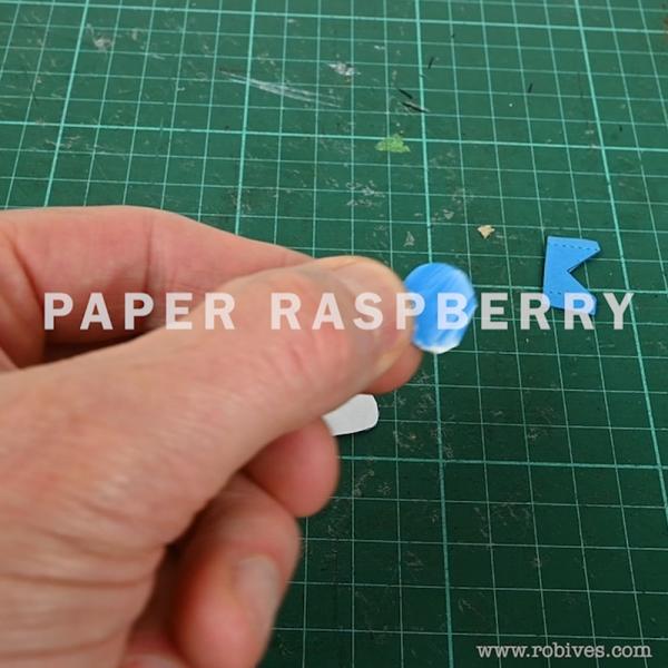raspberry1000